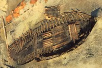 Progetto VALUE – promozione del patrimonio archeologico fra Italia e Croazia